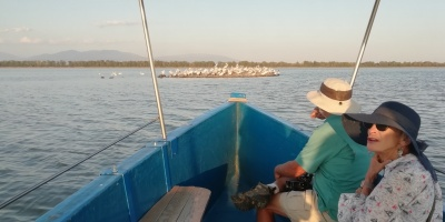 Rediviva Ecotrips: custom made daily excursions for birders and nature lovers